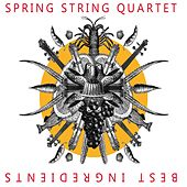 Best Ingredients by SPRING STRING QUARTET
