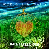 World She Waits by Salmonella Dub
