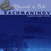 The Ulimate Piano Collection: Rachmaninov: Famous Piano Pieces by Margarete Babinsky