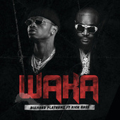 Waka by Diamond Platnumz