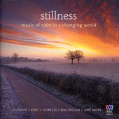Stillness: Music Of Calm In A Changing World by Various Artists