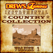Drew's Famous Instrumental Country Collection, Vol. 1 by The Hit Crew(1)