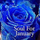 Soul For January von Various Artists