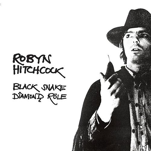 Play & Download Black Snake Diamond Role by Robyn Hitchcock | Napster