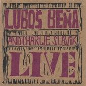 Lubos Bena Live by Lubos Bena
