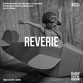 Reverie by Trace