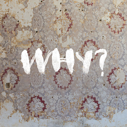 Proactive Evolution (Nick Diamonds Remix) by Why?