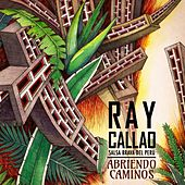 Abriendo Caminos by Ray Callao