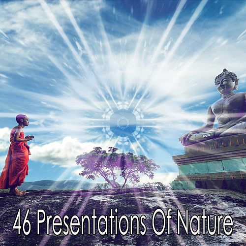46 Presentations Of Nature de Lullabies for Deep Meditation