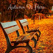 Autumn Is Here by Meditation Music Zone
