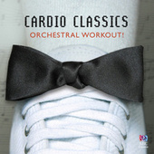 Cardio Classics by Various Artists