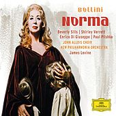 Play & Download Bellini: Norma by Various Artists | Napster