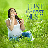 Just the Best Music, Vol. 6: Sweet Lullabies for your Pregnancy von Various Artists