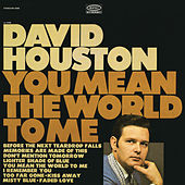 You Mean the World to Me by David Houston