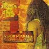 A Bob Marley (Ao vivo) by Tribo de Jah