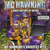 A Brief History of Rhyme: MC Hawking's Greatest Hits by M.C. Hawking
