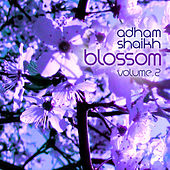 Music for Cherry Blossoms, Vol. 2 by Adham Shaikh