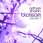 Music for Cherry Blossoms, Vol. 1 by Adham Shaikh