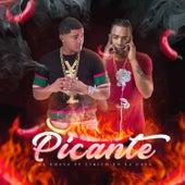 Picante by Chava