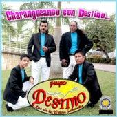 Charangueando Con Destino by Grupo Destino Los De La Wewa Sabrosita