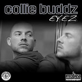 Eyez by Collie Buddz