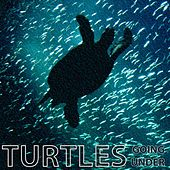 Going Under by The Turtles