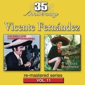 Play & Download Vol. 11: De Que Manera Te Olivido/Lobo Herido by Vicente Fernández | Napster