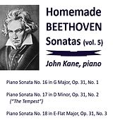 Homemade Beethoven Sonatas, Vol. 5 by John Kane