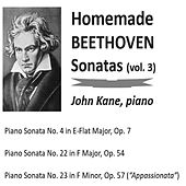 Homemade Beethoven Sonatas, Vol. 3 by John Kane