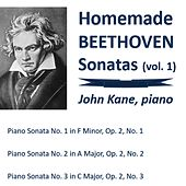 Homemade Beethoven Sonatas, Vol. 1 by John Kane