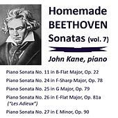 Homemade Beethoven Sonatas, Vol. 7 by John Kane