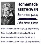 Homemade Beethoven Sonatas, Vol. 6 by John Kane