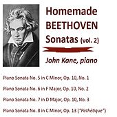Homemade Beethoven Sonatas, Vol. 2 by John Kane