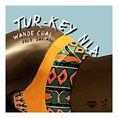 Tur-Key Nla by Wande Coal