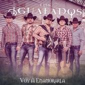 Voy a Enamorarla by Los Igualados