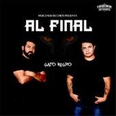 Al Final de El Gato Negro