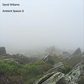 Ambient Spaces, Vol. II by David Williams