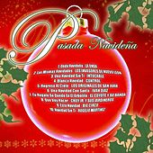 Posada Navidena by Various Artists