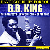 B.B.King (Have I Got Blues Got You) by B.B. King