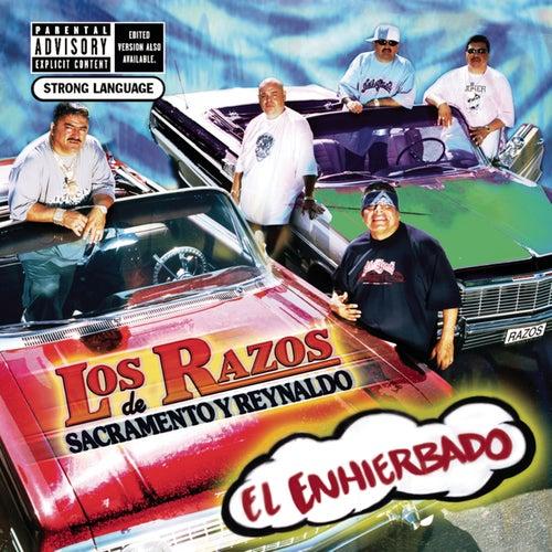 Play & Download El Enhierbado by Los Razos | Napster