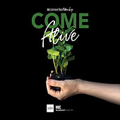 Come Alive by Connection Worship Band