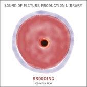 Brooding by Podington Bear