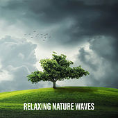 Relaxing Nature Waves by Nature Sounds Relaxation: Music for Sleep, Meditation, Massage Therapy, Spa