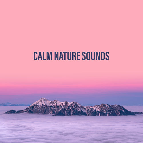 Calm Nature Sounds by Sounds Of Nature