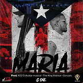 Maria by Gone