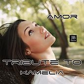 Amor (Tribute To Kamelia) by Disco Fever