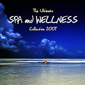Play & Download Spa and Wellness Collection 2009 by Spa Music Masters | Napster