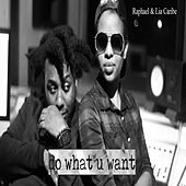 Do What U Want by Raphael