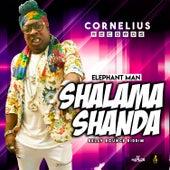 Shalama Shanda by Elephant Man