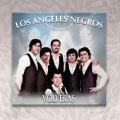 Volverás by Los Angeles Negros